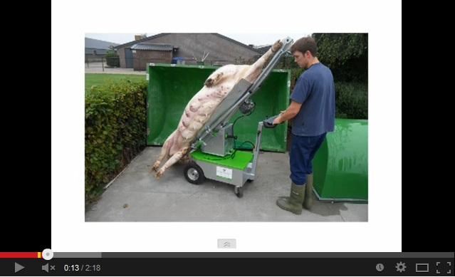 pig carcass remover